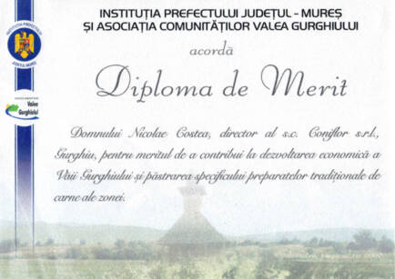 diploma-merit